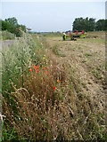 TQ4968 : Agricultural equipment in a field near Hockenden by Marathon