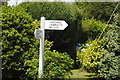 SX1659 : Floral Signpost by Barry Ephgrave