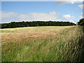 TF8640 : Harvested field west of Lord's Close, Burnham Thorpe by Evelyn Simak