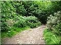 SE1427 : 2km to Woodside by Christine Johnstone