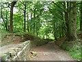 SE1427 : High Fernley Road or Sowden Lane by Christine Johnstone