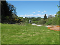 NX4564 : The entrance to Kirroughtree Forest Park by Ann Cook