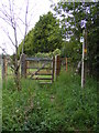 TM4161 : Footpath to School Road by Adrian Cable