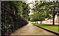 J3973 : Footpath and trees, Stormont, Belfast (1) by Albert Bridge