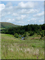 SN8382 : Rough grass and forest by the Afon Tarrenig, Powys by Roger  Kidd