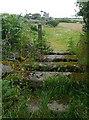 SW4838 : Cornish stile near Towednack by Graham Horn