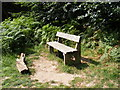 TM3451 : Seat on Daisy's Circular Walk by Adrian Cable