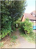 SX9392 : A private alleyway between Barrack Road and Manston Terrace by David Smith