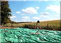 SU4981 : Tin Man Scarecrow, East Ilsley by Des Blenkinsopp