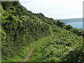 SW9641 : South West Coast Path, looking east by Rob Purvis