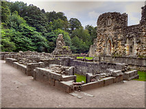 SE2768 : Fountains Abbey Ruins by David Dixon