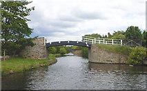 SE2519 : Lodge Farm Bridge by Mike Todd