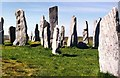 NB2133 : The Callanish Stones of the Isle of Lewis by D Gore