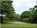 ST5961 : Moorledge Lane by Rob Purvis