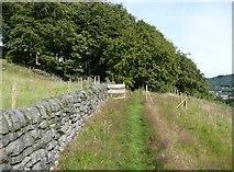SE0026 : Hebden Royd Footpath 17 at Burlees Wood, Mytholmroyd by Humphrey Bolton