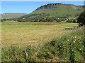 G7050 : Cropped field with Benwiskin by Jonathan Wilkins