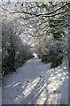 NZ3235 : Snow covered lane, Coxhoe by David Robinson
