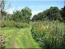 NT5682 : Between the lochs, Balgone by Richard Webb