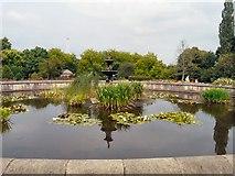 SJ9090 : Vernon Park Lily Pond by Gerald England