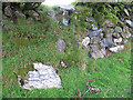 SX5564 : Stones in an ancient wall by Stephen Craven