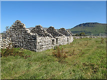 G6951 : Ruined cottage, Drumfad by Jonathan Wilkins