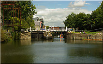 TQ3783 : Old Ford Lock, River Lee Navigation by Julian Osley