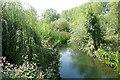 SU7876 : River Loddon at Twyford by Graham Horn
