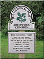 TQ1746 : Holmwood Common sign by Oast House Archive
