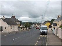 R7624 : Main Street, Ballylanders by Neil Theasby