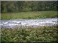 NJ3729 : River Deveron in spate by Stanley Howe