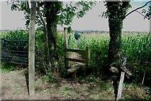 SK0722 : Footpath through Sweetcorn by Mick Malpass
