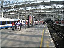 TQ3179 : Platform 5 - London Waterloo by Sandy B