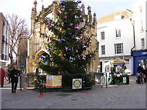 SU8604 : Chichester Christmas Tree by Gordon Griffiths