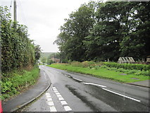SE8665 : A  Wet  Day  in  Wharram  le  Street by Martin Dawes