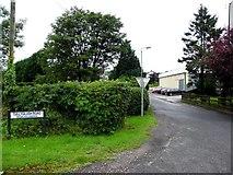 H6058 : Tullyglush Road, Sess Kilgreen by Kenneth  Allen