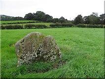 H6058 : Standing stone, Sess Kilgreen by Kenneth  Allen