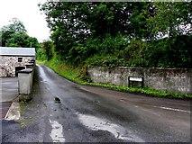 H6059 : Tullyglush Road, Shantavny Scotch by Kenneth  Allen