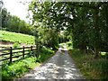 SO3496 : Lane running past Rock Farm by Christine Johnstone