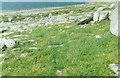 M0903 : Burren karst meadow landscape by Stuart Logan