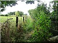 SO5273 : Fenced footpath heading to the railway line by Christine Johnstone
