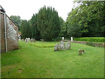 SU5846 : Dummer - All Saints Church:  churchyard (ii) by Basher Eyre