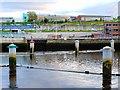 NZ2563 : Bollards west of the Gateshead Millennium Bridge by Andrew Curtis
