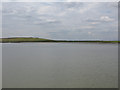 TQ5379 : Aveley Marshes by Nick Smith