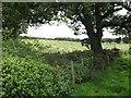SD6229 : Mown hay field by Philip Platt