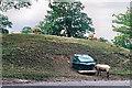 SK7903 : Salt lick for sheep by Stephen Craven
