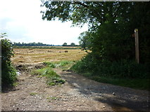 TA1345 : A footpath off Rise Lane, Rise by Ian S