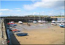 NT4999 : Elie Harbour by Bob Jones