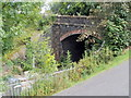ST2986 : Western portal of Gaer Tunnel, Newport by Jaggery