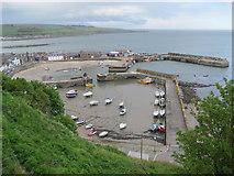 NO8785 : Stonehaven Harbour by Bob Jones