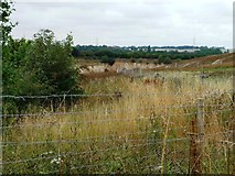 SE5114 : Barnsdale Bar Quarry by Christine Johnstone